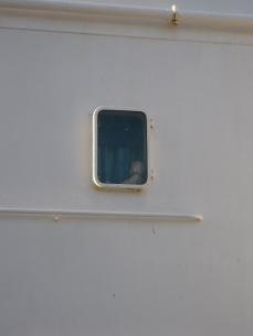Un osito de peluche en un carguero holandés