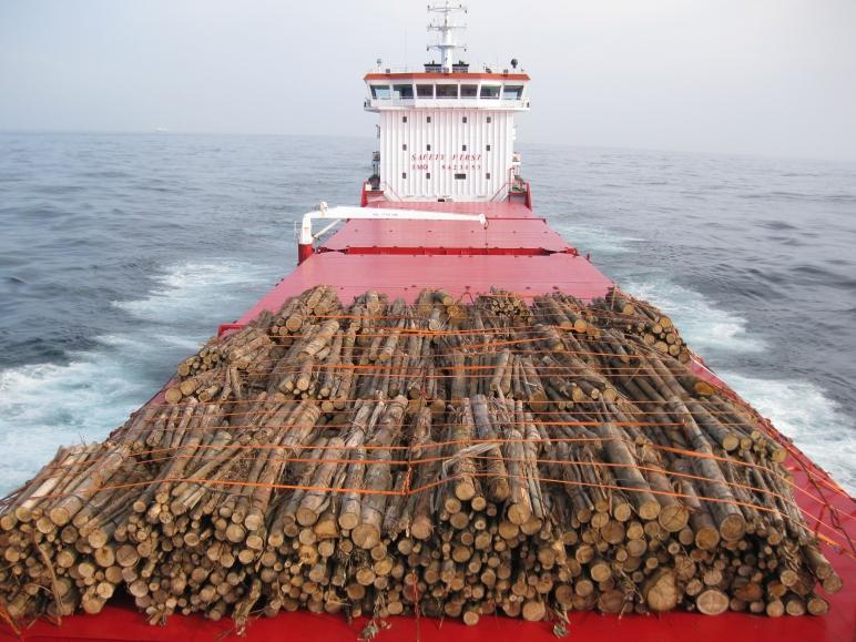 Cubertada de troncos.